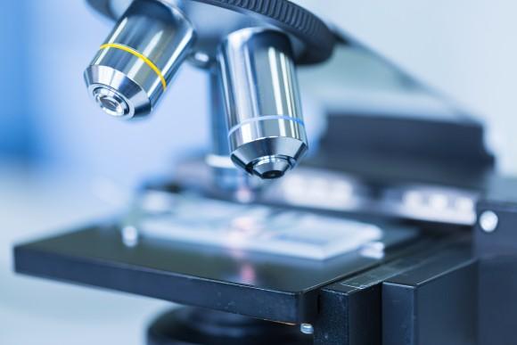 httpinstitutomarques.comreproduccion-asistidaandrologiabiopsia-testicular